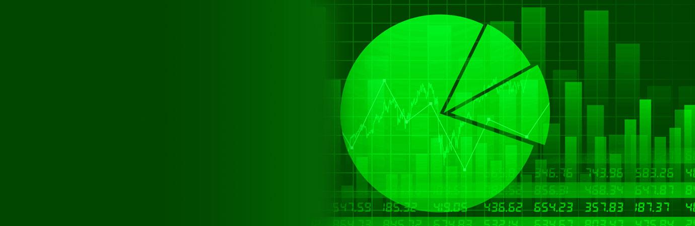 Asset Liability Management (ALM)