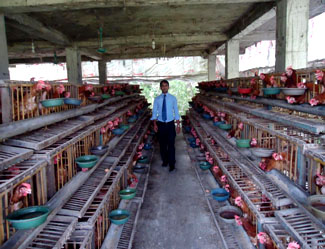 Bank Asia Agricultural  Photo